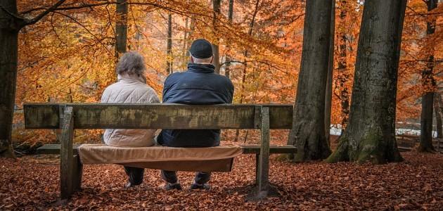 Licenciement économique en cas de retraite du dirigeant sans reprise