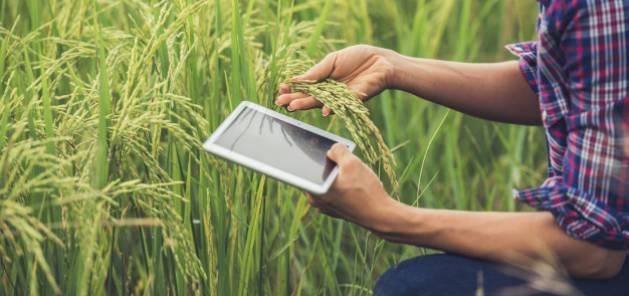 Implanter son entreprise dans une zone de revitalisation rurale